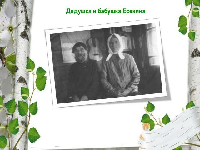 Дедушка и бабушка Есенина