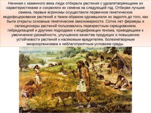 Начиная с каменного века люди отбирали растения с удовлетворяющими их характе