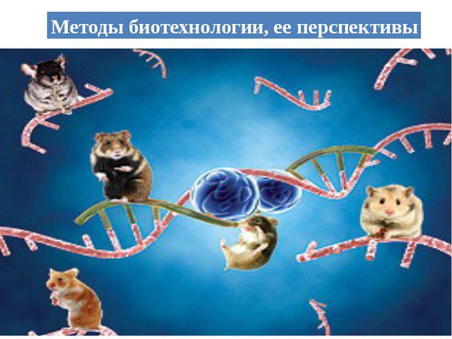 Методы биотехнологии,ее перспективы