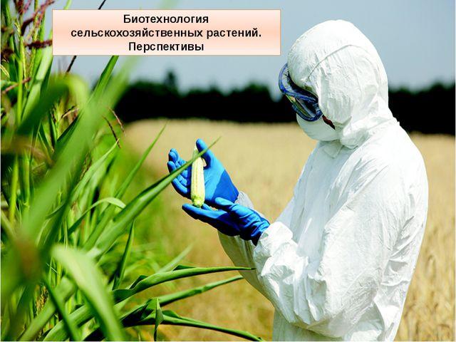 Биотехнология сельскохозяйственных растений. Перспективы