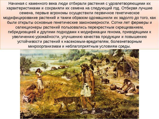 Начиная с каменного века люди отбирали растения с удовлетворяющими их характе...