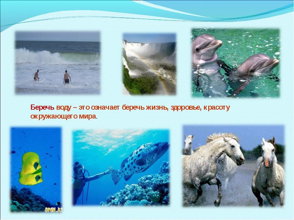 Беречь воду – это означает беречь жизнь, здоровье, красоту окружающего мира.
