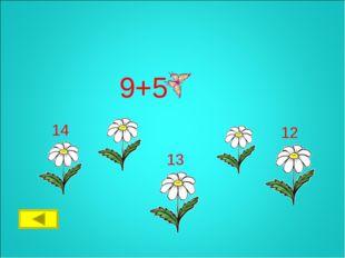 9+5 12 13 14