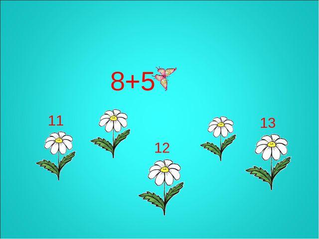 8+5 13 12 11
