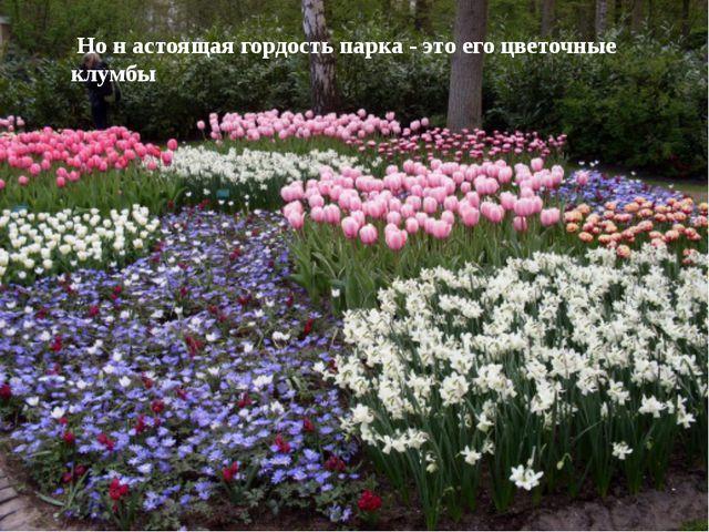 Каждое дерево! Каждый куст! Каждый фонтан! Каждый водоем! Каждый цветник! Каж...