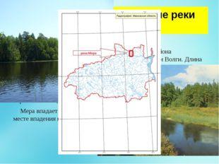 Географическое положение реки Меры. Ме́ра берет начало на Галичско-Чухломско