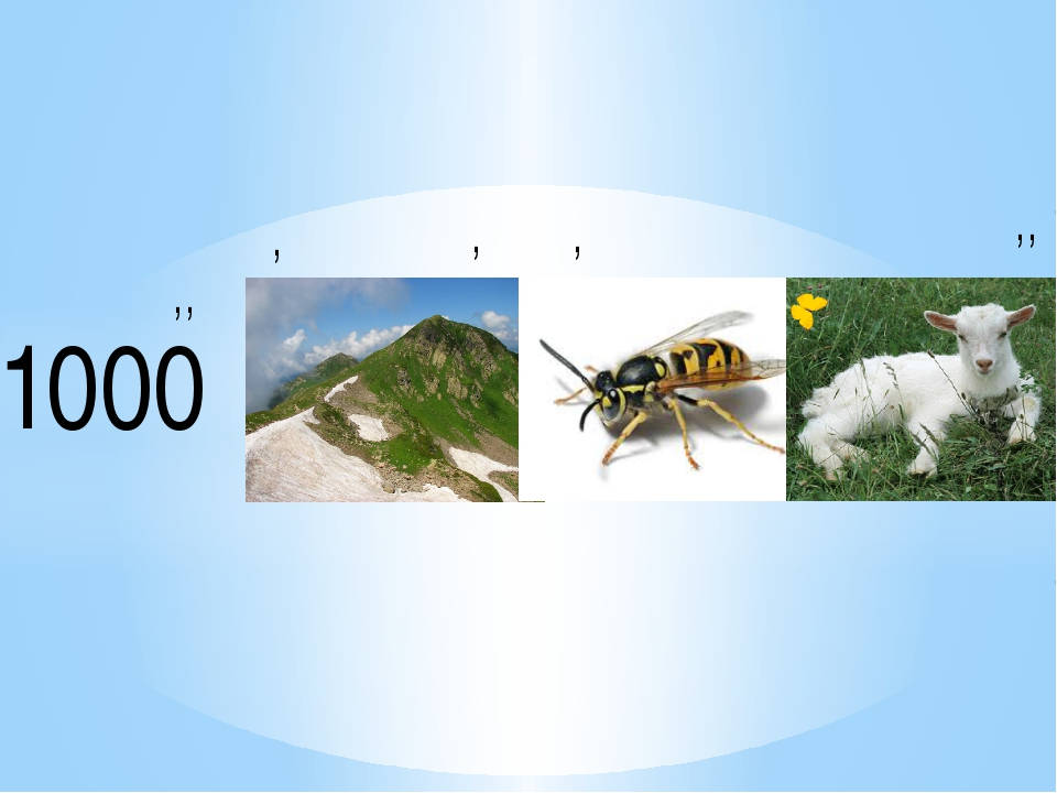 1000 ,, , , , ,,