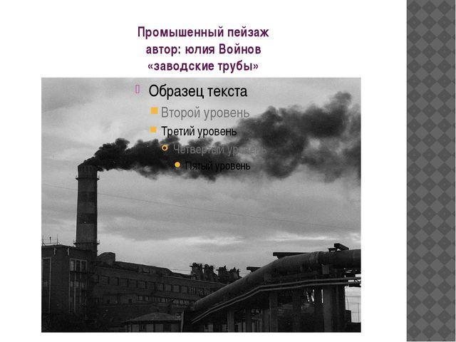 Промышенный пейзаж автор: юлия Войнов «заводские трубы»