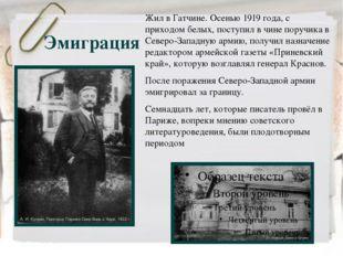 Эмиграция Жил в Гатчине. Осенью 1919 года, с приходом белых, поступил в чине