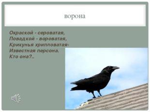 ворона Окраской - сероватая, Повадкой - вороватая, Крикунья хрипловатая- Изве