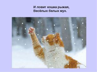 И ловит кошка рыжая, Весёлых белых мух.