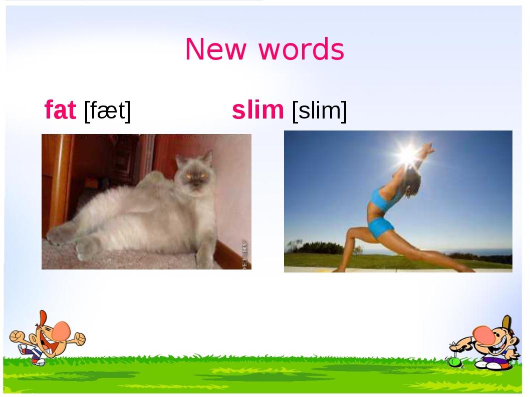 New words fat [fæt] slim [slim] полный стройный