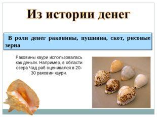 Раковины каури использовалась как деньги. Например, в области озера Чад раб о