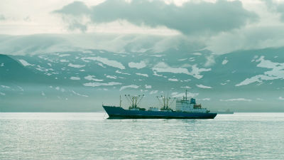 Траулер в Охотском море затонул из-за нарушений при ловле рыбы