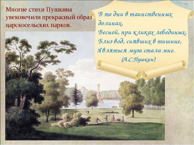 Многие стихи Пушкина увековечили прекрасный образ царскосельских парков.