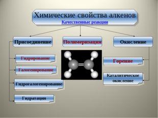 Химические свойства алкенов Качественные реакции Присоединение Окисление Поли