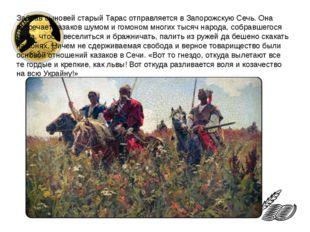 Забрав сыновей старый Тарас отправляется в Запорожскую Сечь. Она встречает ка