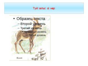 Туйғахтығ аӊнар: