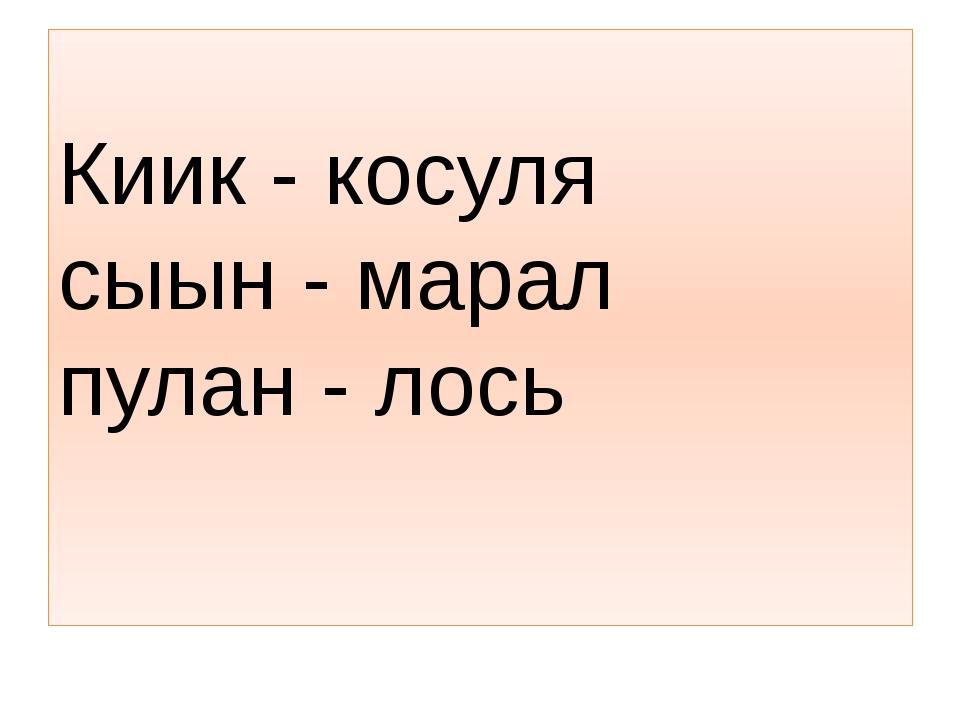 Киик - косуля сыын - марал пулан - лось