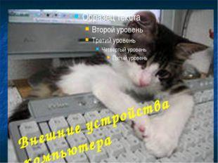 Манипуляторы Манипулятор «мышь» Трекбол Джойстик Дигитайзер Манипуляторы пред