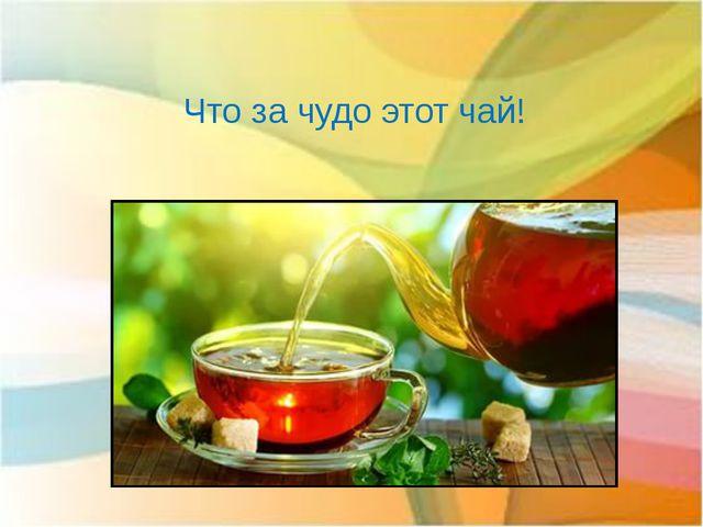 Что за чудо этот чай!