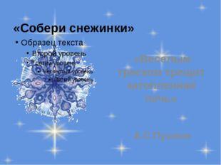«Собери снежинки» «Веселым треском трещит затопленная печь» А.С.Пушкин