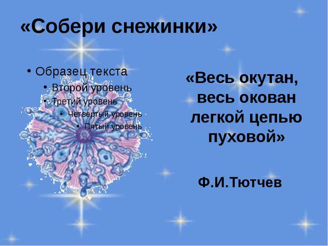 «Собери снежинки» «Весь окутан, весь окован легкой цепью пуховой» Ф.И.Тютчев