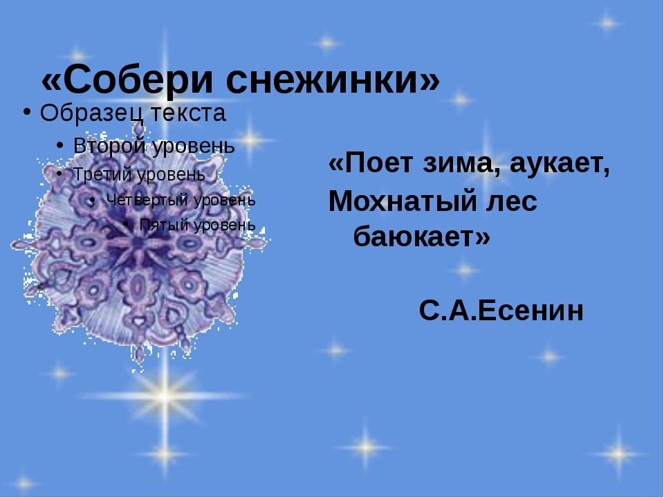 «Собери снежинки» «Поет зима, аукает, Мохнатый лес баюкает» С.А.Есенин