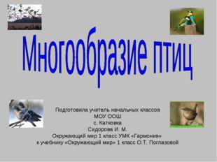Подготовила учитель начальных классов МОУ ООШ с. Катковка Сидорова И. М. Окру