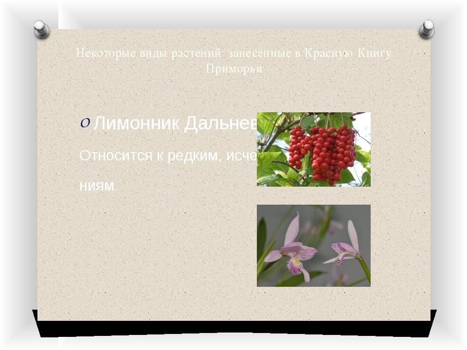 Некоторые виды растений занесённые в Красную Книгу Приморья Лимонник Дальнево...