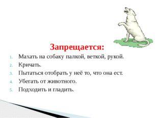 Запрещается: Махать на собаку палкой, веткой, рукой. Кричать. Пытаться отобра