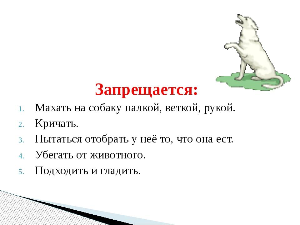Запрещается: Махать на собаку палкой, веткой, рукой. Кричать. Пытаться отобра...