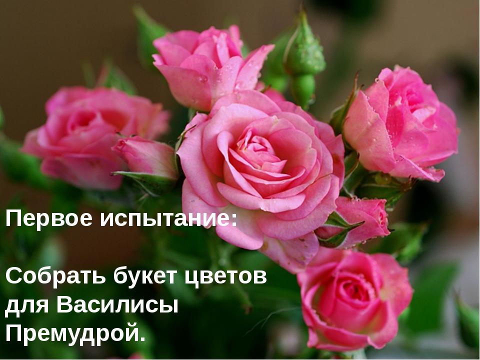 Первое испытание: Собрать букет цветов для Василисы Премудрой.