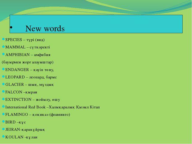 New words SPECIES – түрі (вид) MAMMAL – сүтқоректі AMPHIBIAN – амфибия (бауы...