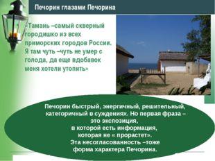 www.themegallery.com Company Logo Печорин глазами Печорина «Тамань –самый скв