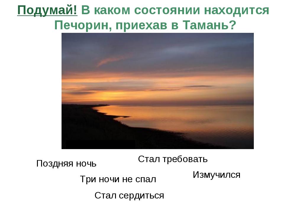 www.themegallery.com Company Logo Подумай! В каком состоянии находится Печори...