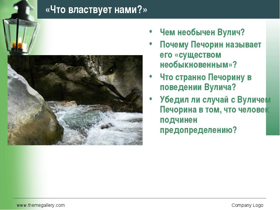 www.themegallery.com Company Logo «Что властвует нами?» Чем необычен Вулич? П...