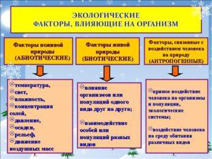 влияние организмов или популяций одного вида друг на друга; взаимодействие ос