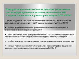Информационно-аналитическая функция управления в системе формирования ключевы