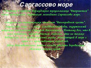 """Саргассово море С востока в пределы бермудского треугольника """"вторгается"""" оче"""