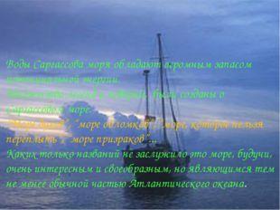 Воды Саргассова моря обладают огромным запасом потенциальной энергии. Множест