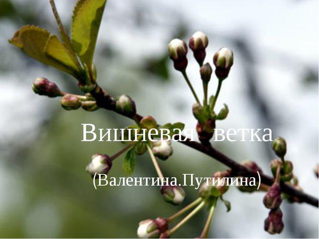 Вишневая ветка (Валентина.Путилина)