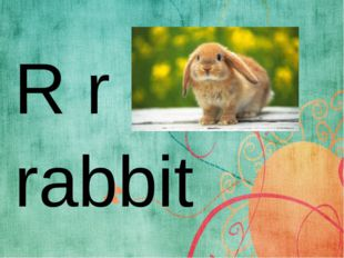 R r rabbit