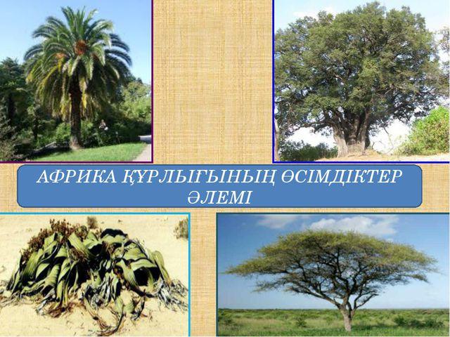 АФРИКА ҚҰРЛЫҒЫНЫҢ ӨСІМДІКТЕР ӘЛЕМІ