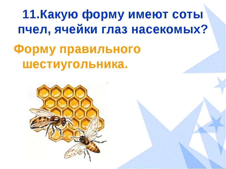 11.Какую форму имеют соты пчел, ячейки глаз насекомых? Форму правильного шест...