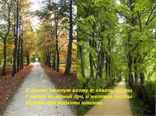 В аллею темную вхожу я; сквозь кусты Глядит вечерний луч, и желтые листы Шумя
