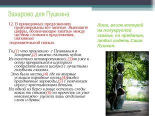 Захарово для Пушкина 12. В приведенных предложениях пронумерованы все запяты