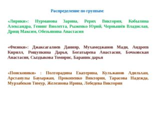 Распределение по группам: «Лирики»: Нурманова Зарина, Рерих Виктория, Кобылин