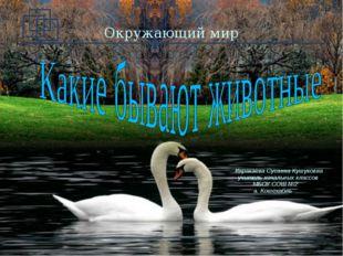 Окружающий мир Каракаева Сусанна Кушуковна учитель начальных классов МБОУ СОШ