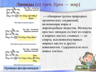 Липиды (отгреч.lípos— жир) — обширная группа природных органических соеди